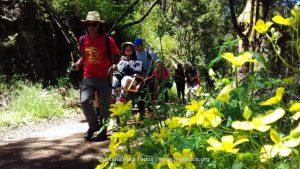 'Naturaleza para todos' en el PN de Garajonay
