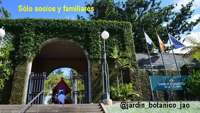 Jardin-Botanico-Puerto-Cruz