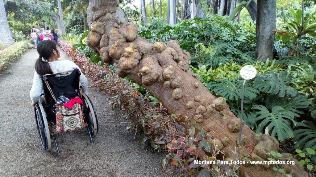 MPT visita el Jardín Botánico del Pto. de la Cruz (3)
