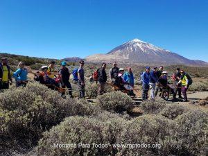 Parte práctica del curso en el Alto de Guamaso (PN del Teide)
